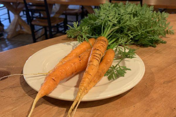 Petites carottes d'automne biologiques